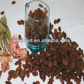 Secas sultanas/raisin alimentos comestíveis