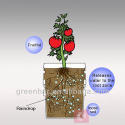 Tomato easy planting water retaining gel