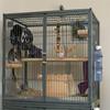 XQ hot sale chinchilla cage