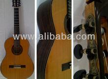 Professional/Vintage Guitar