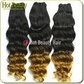 Dois tons de cabelo 100% cabelos kanekalon jumbo braid ombre