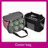 2013 new design small cooler bag