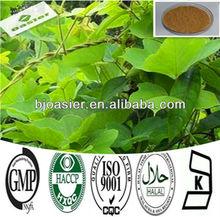 Pueraria Mirifica Extract Powder