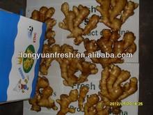 new fresh ginger 150g up good price