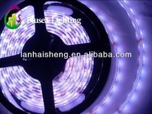 Shenzhen factory led strip light 5050 high-end
