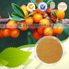 High quality Seabuckthorn Extract/ Seabuckthorn Fruit Extract