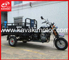 Automatic Pedal Cargo Tricycle/Motorcycle For Africa Market