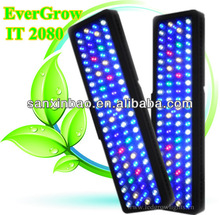 evergrow it2080 intelligent dimmable led aquarium lighting and supply with CE and RoHs