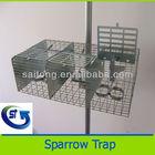 Live bird cage trap