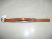 Pet Collar & Leashes