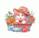 CAT IN BASKET kids plastisol ftalat free heat transfer
