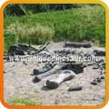 mostra attrezzature parco giochi ossa di dinosauro fossile di dinosauro