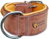 1087 Bridle leather soft padded Dog Collar
