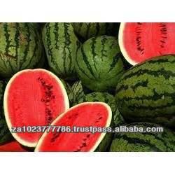 Fresh Fruit-Water Melon