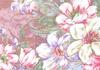 Japanese Cotton Print Fabric