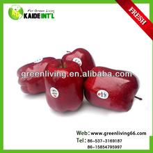 good farmer red huaniu apple(apple:fuji, huaniu, gala, golden,qingguan, red star)