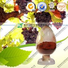 Grape seed P.E.grape seed P.E./Vitis vinifera L./grapestone extra