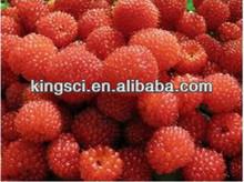 natural raspberries extract