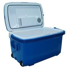 car fridge,45L electric beer ,mini can fridge car beverage cooler,0.5L-45L
