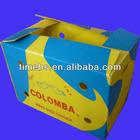 eco-friendly fresh fruit cartonplast boxes for shipping