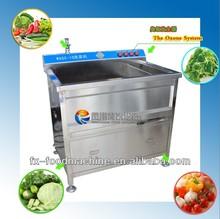 WASC-10 Restaurant use multifunction automatic small vegetable washing machine(skype: wulihuaflower)