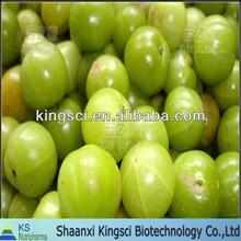 best price natural high quality olive leaf extract olive leaf extract oleuropein water soluble from china manufacturer