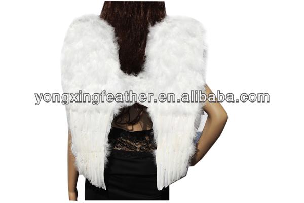 bonito pato branco pena asas