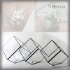 MX009090 tiffany geometric glass terrarium for plant holder home decoration piece