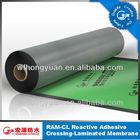 HDPE waterproof sheet/HDPE waterproof membrane/HDPE waterproof roll