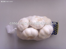 5-7pcs/mesh bag Best Seller Fresh 2013 Crop Chinese Garlic