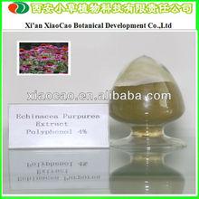 Manufacturer Supply Pure Echinacea Purpurea Extract Cichoric Acid/Echinacea Purpurea Extract Polyphenols/Echinacea Herb P.E.