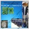 molding silicone rubber liquid