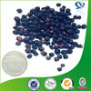 black pepper fruit extract powder piperine for sale