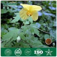 High quality Celandine extract powder 5% alkaloids UV