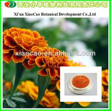 Supply Marigold Flower Lutein/Marigold P.E. Lutein/90% Lutein