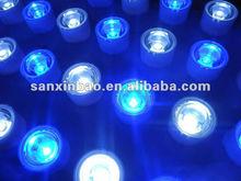 2014 EverGrow Programable new led aquarium light Full Spectrum modular auto dimming 120w