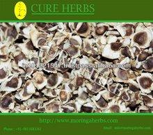Dried moringa seeds /Malunggay seeds for sale