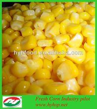 Frozen Food -Sweet Corn Kernels
