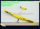 Large scale plane model -PredatorIII-E electric rc sailplane for sale