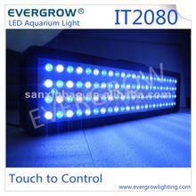 Evergrow IT2080 auto system 12v led fishing float light