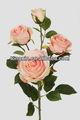 27661h especialmente diseñado muchas cabezas de las flores en la final de la promoción de la flor de la decoración de flores nombre de imagen