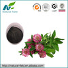 100% Natural Red Clover Extract Isoflavone 8%, 20%, 40% Manufacturer