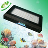 Free shipping coral light dimmable led aquarium lighting P4 55*3w 20000k led aquarium led light
