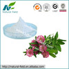 100% Natural Red Clover Extract Biochanin A 98% Manufacturer