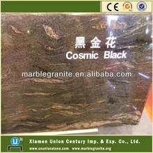 Polished Cosmic Black Granite