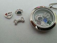 U Pick Floating Charm for glass living locket wholesale