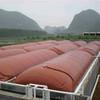 SUNRISE bacteria for biogas digester /biogas plant animation