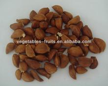 cangshan base plant hot 4-6 peel hot roasted peeled garlic clove