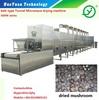 fruits and vegetables dehydration machines/microwave dehydrator/mushroom drying equipment/mushroom drying machine/food dryer