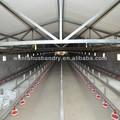 avesdecapoeira equipamento de alimentação para a fazenda de galinha